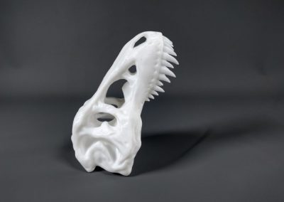 Tyrannosaure - vertical -  Stratomaker